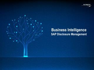 Business  Intelligence SAP  Disclosure  Management