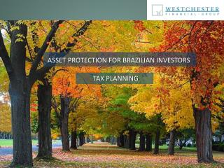 ASSET PROTECTION FOR BRAZILIAN INVESTORS