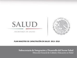 PLAN MAESTRO DE CAPACITACIÓN EN SALUD  2013- 2018