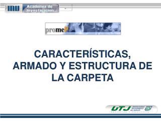 CARACTERÍSTICAS, ARMADO Y ESTRUCTURA  DE LA  CARPETA