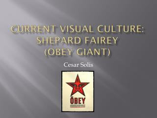 Current Visual Culture:  Shepard  Fairey (Obey Giant)