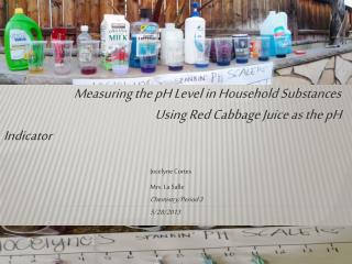 Measuring the pH Level in Household Substances 				    Using Red Cabbage Juice as the pH Indicator