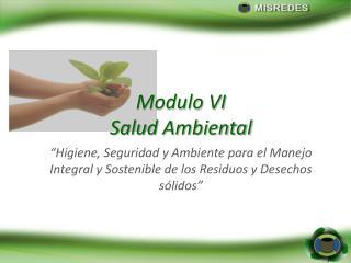 Modulo  VI Salud  Ambiental