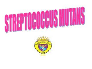 STREPTOCOCCUS MUTANS
