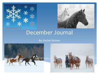 December Journal