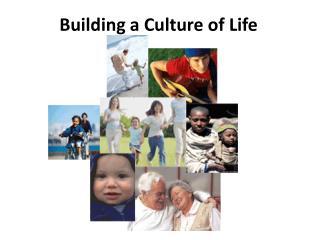 Building a Culture of Life