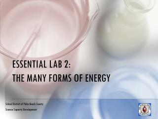 ESSENTIAL LAB 2:  THE MANY FORMS OF ENERGY