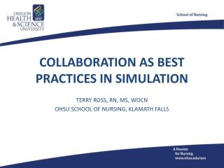 COLLABORATION AS BEST PRACTICES IN SIMULATION