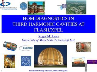 HOM DIAGNOSTICS IN  THIRD HARMONIC CAVITIES AT FLASH/XFEL