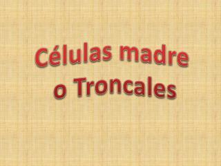 Células madre  o Troncales