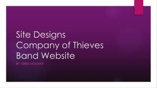 Site Designs Company of Thieves Band Website