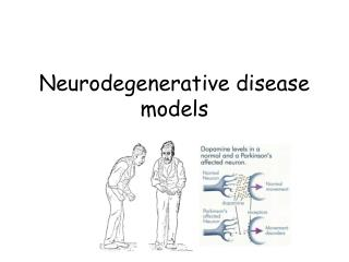 Neurodegenerative disease models