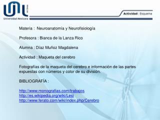 Materia :  Neuroanatomía y Neurofisiología Profesora : Bianca de la Lanza Rico