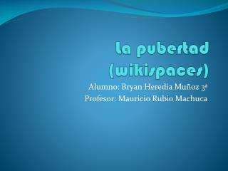 La pubertad ( wikispaces )