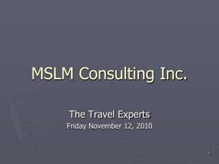 MSLM Consulting  Inc.