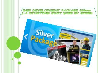 WEB DEVELOPMENT PACKAGE (Silver