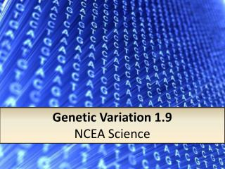 Genetic Variation 1.9 NCEA Science