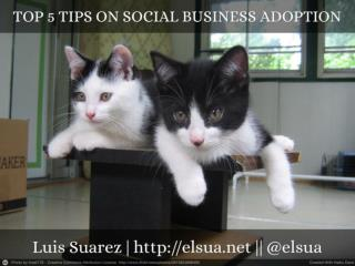 Top 5 Tips On Social Business Adoption