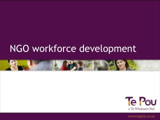 NGO workforce development