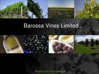 Barossa Vines Limited