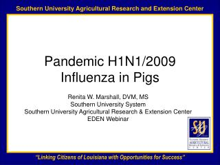 Pandemic H1N1/2009 Influenza in Pigs
