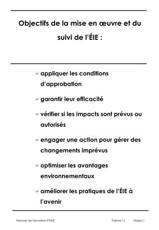 Objectifs de la mise en œuvre et du suivi de l' É IE :