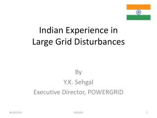 Indian Experience in Large Grid Disturbances