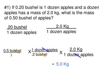 #1) If 0.20 bushel is 1 dozen apples and a dozen apples has a mass of 2.0 kg, what is the mass
