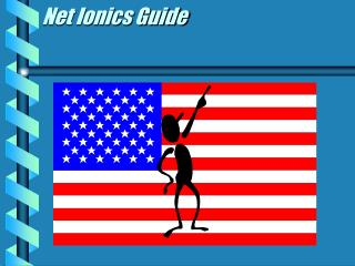 Net Ionics Guide