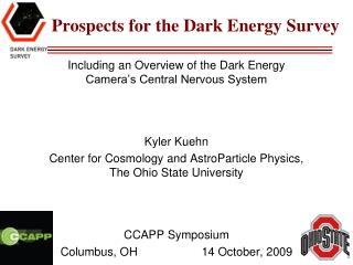 Prospects for the Dark Energy Survey