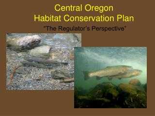 "Central Oregon  Habitat Conservation Plan ""The Regulator's Perspective"""