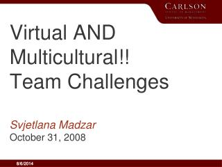 Virtual AND Multicultural!! Team Challenges Svjetlana Madzar October 31, 2008