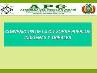 CONVENIO 169 DE LA OIT SOBRE PUEBLOS INDIGENAS Y TRIBALES