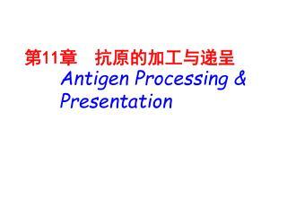 第 11 章  抗原的加工与递呈 Antigen Processing &  Presentation