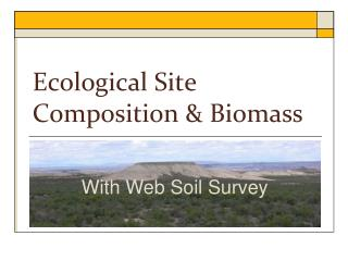Ecological Site Composition & Biomass