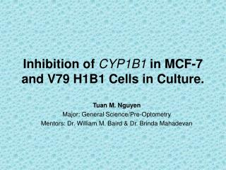 Inhibition of  CYP1B1  in MCF-7 and V79 H1B1 Cells in Culture.