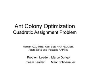 Ant Colony Optimization Quadratic Assignment Problem