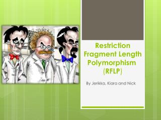 Restriction Fragment Length Polymorphism ( RFLP )