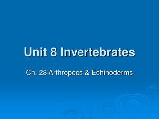 Unit 8 Invertebrates