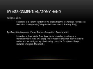 IW assignment : Anatomy Hand