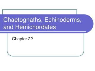 Chaetognaths, Echinoderms, and Hemichordates