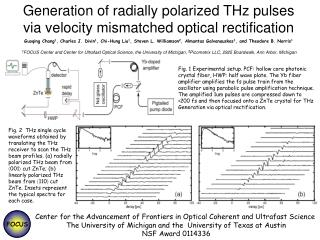 Generation of radially polarized THz pulses via velocity mismatched optical rectification