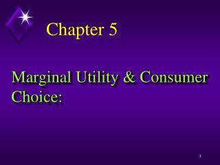 Marginal Utility & Consumer Choice: