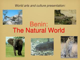 Benin: The Natural World