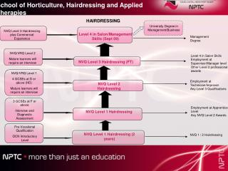 NVQ Level 1 Hairdressing (2 years)