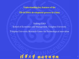 Understanding key features of the  TD-SCDMA development process in China