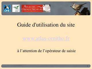 Guide d'utilisation du site atlas-ornitho.fr  à l'attention de l'opérateur de saisie