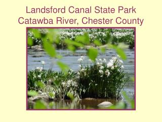 Landsford Canal State Park Catawba River, Chester County