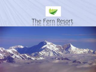 The Fern Resort