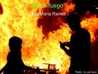 """""""Alto al fuego"""""""
